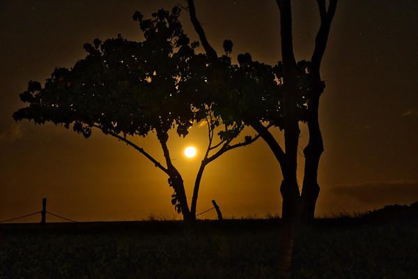 Ka'anapali Moonset