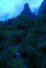 Iao Valley and Iao Needle. #MAU2009-14