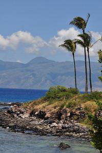 Maui day 2 118