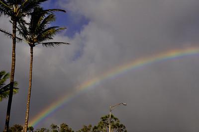 aMaui day 7 056