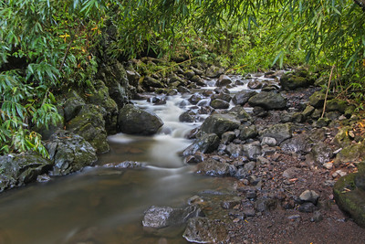 Flowing Waters, Kipahulu, Maui