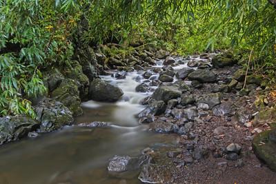Flowing Waters, Kipahulu, Maui