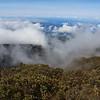 Clouds flowing through the Ko'olau Gap from the Halemau'u Trail, Haleakala Nationa Park, Maui, Hawaiian Islands