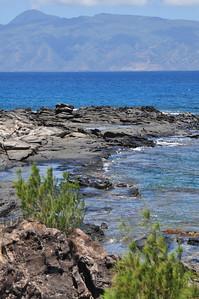Maui day 2 129