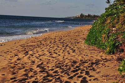 Maui day 1 147