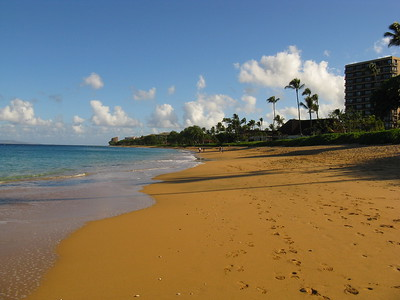 Ka'anapali Beach looking north