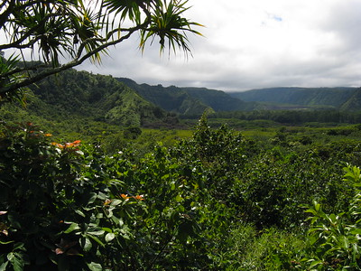 Wailua Valley, Road to Hana, Maui, Hawaiian Islands