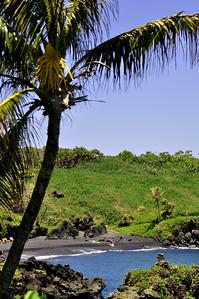 aMaui day 3 209