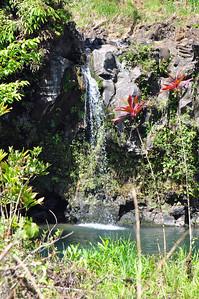 aMaui day 3 043