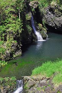 aMaui day 3 047