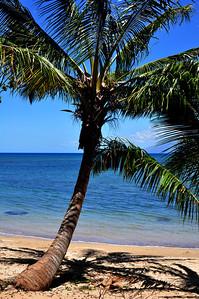 Maui day 2 053