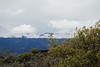 View of Mauna Loa from a location near the visitor center on the slopes of Mauna Kea #KEA2009-1