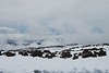 View of Mauna Loa from a location on the slopes of Mauna Kea. #KEA2009-6
