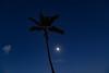 Full Moon~6-26-2021
