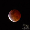 Super Blood Wolf Moon coming out of Eclipse, Kailua, Hawai'i January 20, 2019