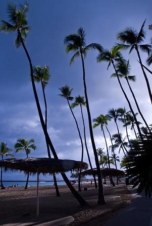 Hawaii Best  (48 of 43)