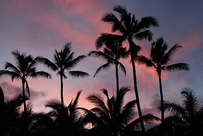 Hawaii Best  (37 of 43)
