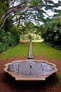 Hawaii Best  (11 of 43)