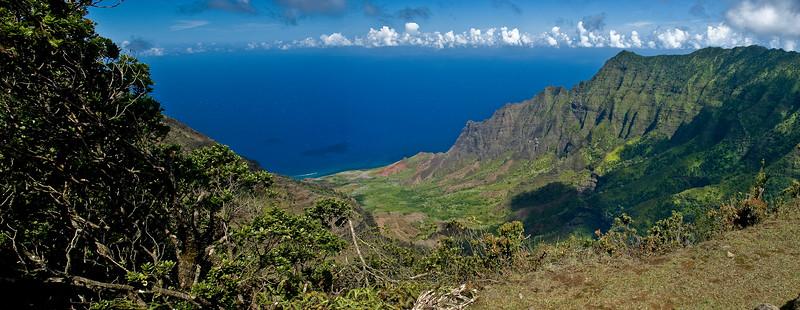 Hawaii Best  (19 of 43)