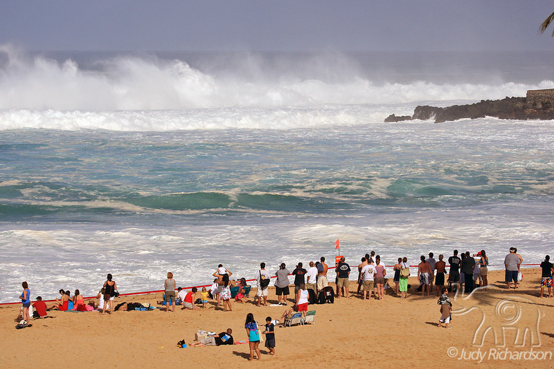 Spectators marvel at massive wave action at Waimea Bay