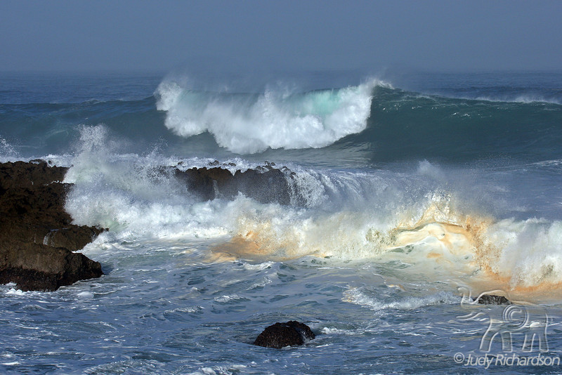 Beauty of waves at Shark's Cove, North Shore, O'ahu