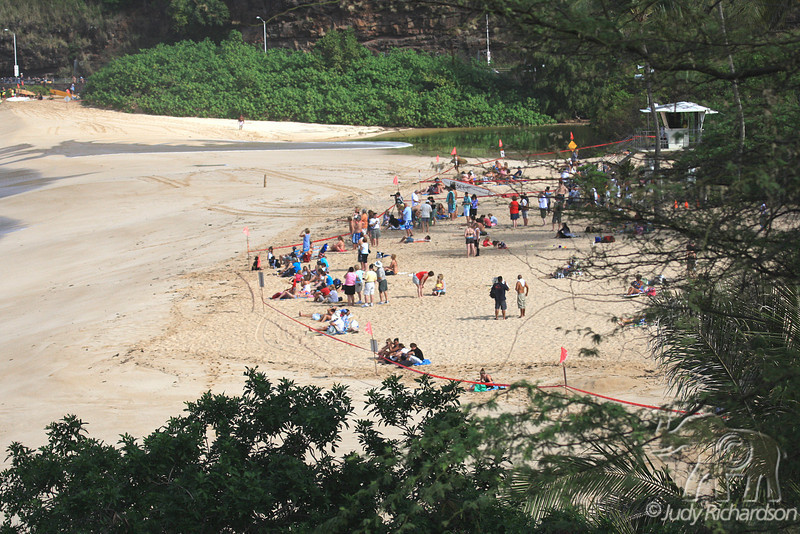 Spectators watching water flow over beach as they stay in taped off area at Waimea Bay