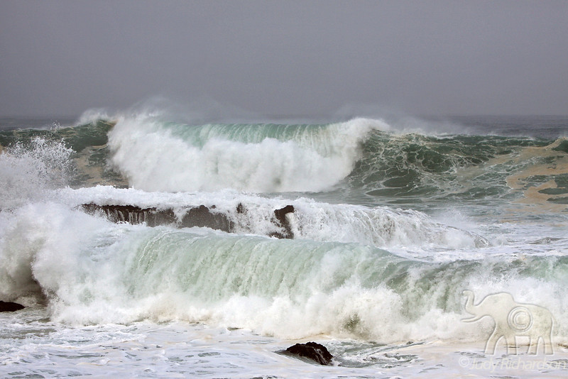 Massive waves roll into Shark's Cove