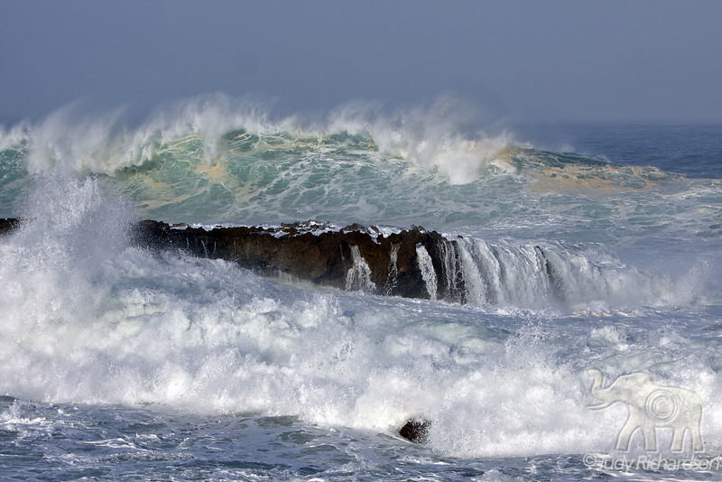 Foaming whitewash from massive wave action at Shark's Cove
