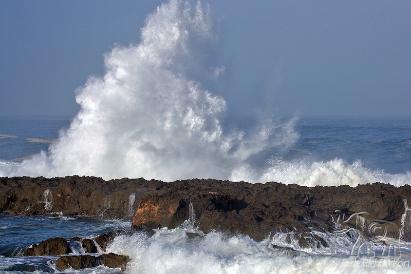 Powerful wave action at Shark's Cove