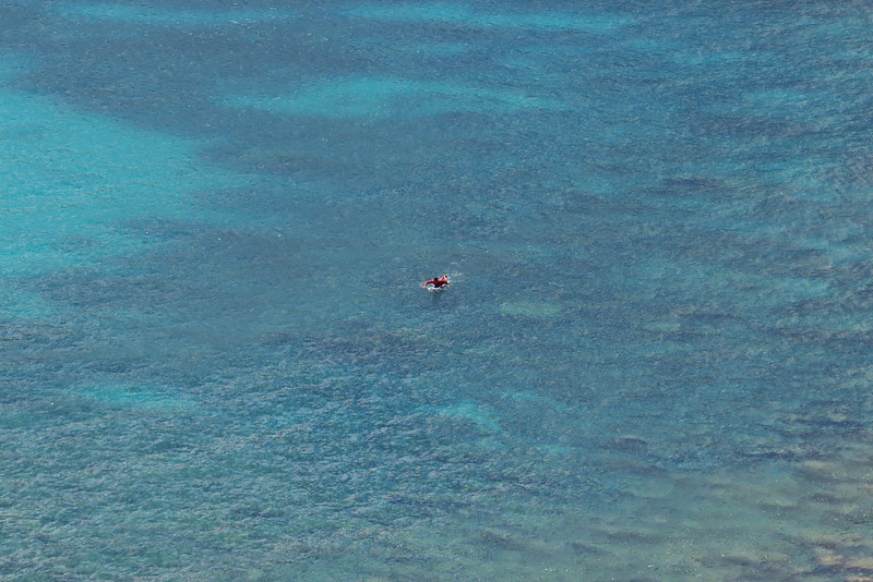 A Lone Surfer