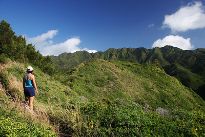 Hawaii Loa ridge