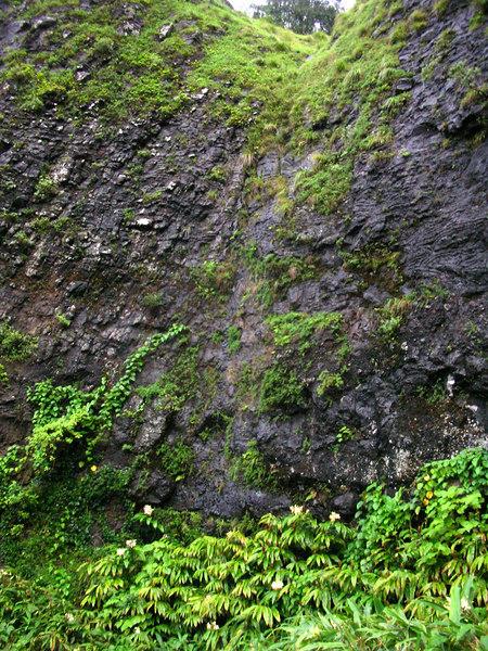 75. Dry Waterfall Along Old Pali Road.JPG