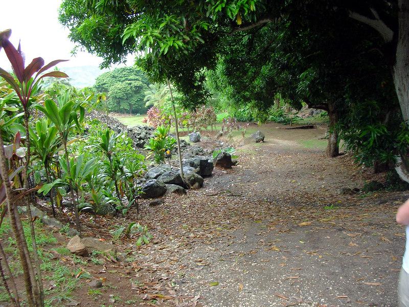 49. Ulupo Heiau Hawaiian Temple.JPG