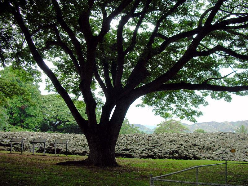 47. Ulupo Heiau Hawaiian Temple.JPG