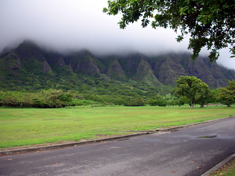 04. Stop on the way to Polynesian Cultural Center.JPG