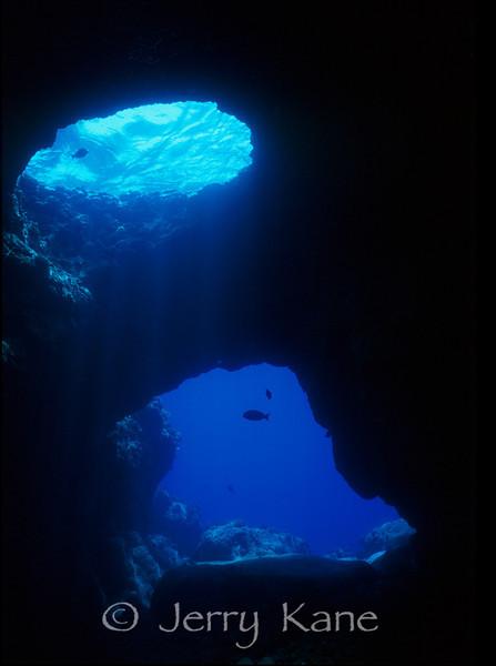 Lava cave with skylight - Pine Trees, Big Island, Hawaii