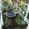 Mauna Lani Resort, Big Island of Hawaii