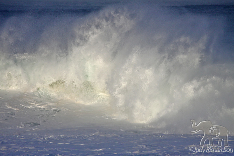 Thunderous wave action at Waimea Bay
