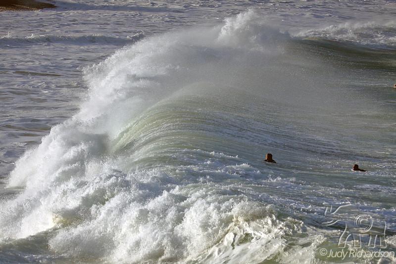 Swimming into massive shore break