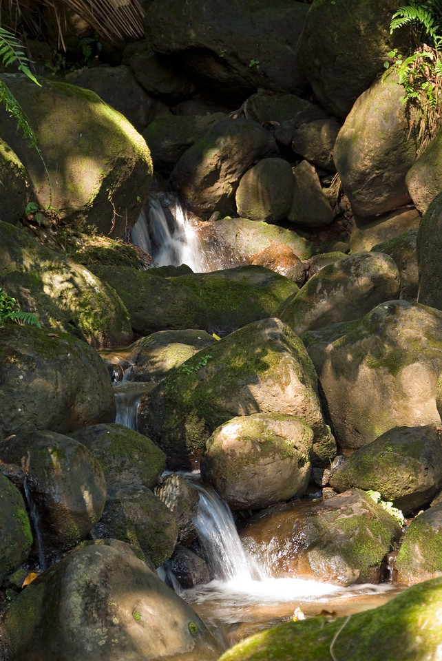 Morning sunlight on a small waterfal along the 4 mile scenic drive to Onomea bay north of Hilo