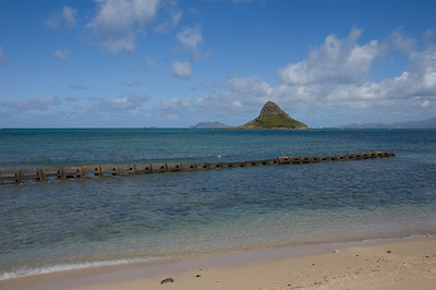 Oahu-16