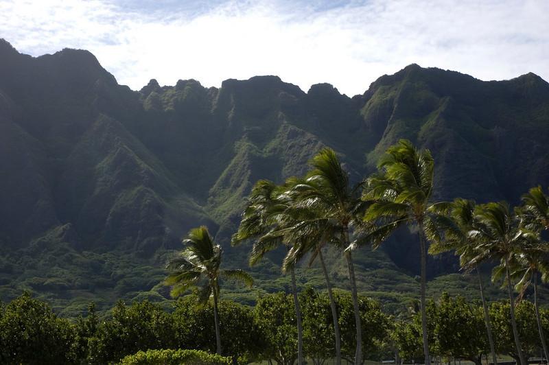 Oahu-21