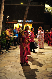 Hawaiian Music  (C) 2009 Brian Neal