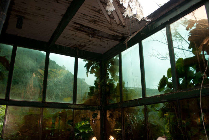 The abandon tea house of Waipio
