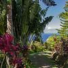 Maui – The Path to Paradise