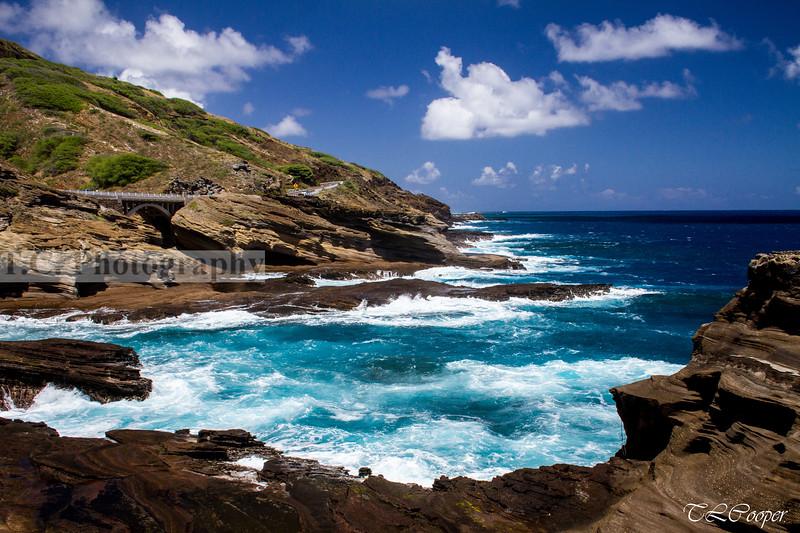 Northeastern Beachside in Hawaii