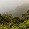 Fog and Na Pali Coast, HI