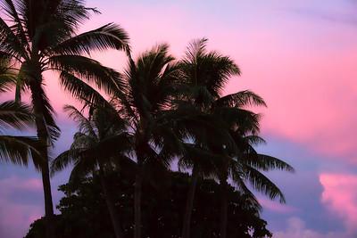 Waikiki (16)