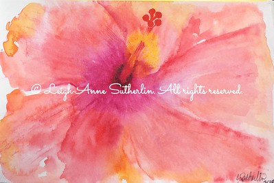 Fiesta Hibiscus Watercolor