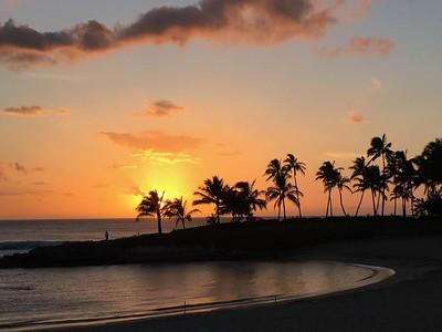 Chuck Harris Hawaii